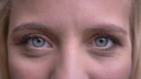 Retrato do close up da fêmea caucasiano bonita nova com os olhos cinzentos que olham em linha reta na câmera vídeos de arquivo