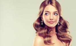 Retrato do close-up da jovem senhora com penteado elegante fotografia de stock royalty free