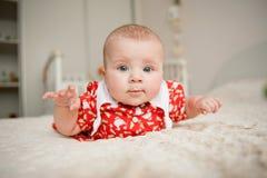 Menina curiosa Foto de Stock