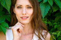 Retrato do close up da mulher moreno bonita nova no fundo das folhas foto de stock