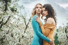 Retrato do close up de duas ninfas bonitas Imagens de Stock