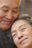 Retrato do close-up de pares superiores, Pequim fotos de stock