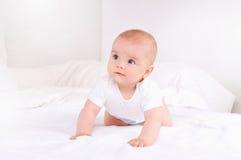 Retrato do close up de recém-nascido adorável Fotografia de Stock Royalty Free