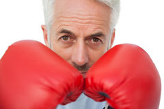 Retrato do close-up de um pugilista superior determinado Fotografia de Stock Royalty Free