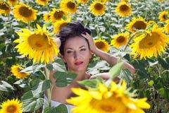 Retrato do close up do campo de Sunfllower Imagem de Stock Royalty Free