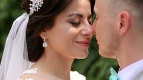 Retrato do close-up dos narizes tocantes dos pares do casamento vídeos de arquivo