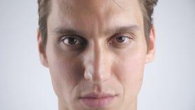 Retrato do close-up do homem bonito sorrido que sorri e que olha ? c?mera no fundo branco da parede fim vídeos de arquivo