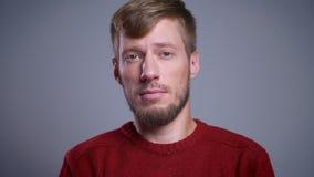 Retrato do close up do homem caucasiano farpado adulto atrativo que olha em linha reta na câmera com expressão facial calma vídeos de arquivo
