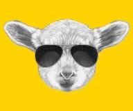 Retrato do cordeiro com óculos de sol ilustração do vetor