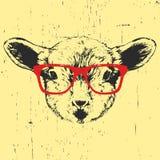 Retrato do cordeiro com vidros ilustração do vetor