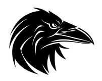 Retrato do corvo Foto de Stock Royalty Free