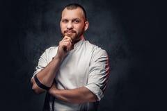 Retrato do cozinheiro farpado do cozinheiro chefe imagem de stock