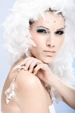 Retrato do encanto da beleza do inverno Imagens de Stock