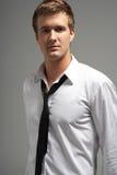 Retrato do estúdio da camisa desgastando e do laço do homem novo fotos de stock royalty free