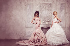 Retrato do estúdio de duas noivas novas bonitas em vestidos longos Foto de Stock