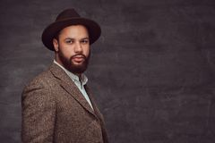 Retrato do estúdio do homem afro-americano considerável em um revestimento e em um chapéu marrons elegantes foto de stock