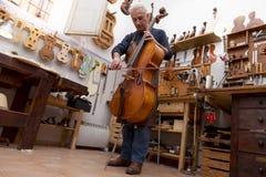 Retrato do fabricante maduro do violino fotografia de stock royalty free