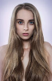 Retrato da mulher natural da beleza com cabelo longo Fotos de Stock