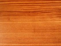 Retrato do fundo da madeira Fotografia de Stock