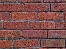 Retrato do fundo do tijolo Fotografia de Stock