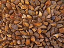 Retrato do fundo dos cobblestones Imagens de Stock
