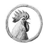 Retrato do galo em um quadro de vime redondo Fotos de Stock Royalty Free