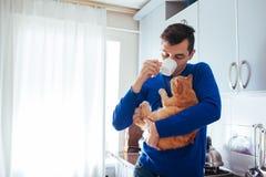 Retrato do gato considerável da terra arrendada do homem novo e do chá bebendo na cozinha fotografia de stock
