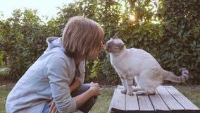 Retrato do gato doméstico no luminoso fora no jardim home, fundo verde natural, olhando afastado, frio tonificado vídeos de arquivo