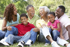 Retrato do grupo da família extensa no parque Fotos de Stock