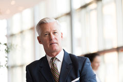 Retrato do homem de negócio superior considerável no escritório moderno Imagem de Stock