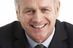 Retrato do homem de negócios envelhecido médio imagens de stock