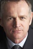 Retrato do homem de negócios envelhecido médio fotos de stock royalty free