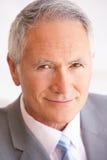 Retrato do homem de negócios sênior Imagem de Stock
