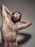 Retrato do homem do iogue imagens de stock