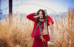 Retrato do inverno da mulher gravida bonita foto de stock royalty free