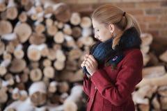Retrato do inverno da mulher loura no fundo da lenha Fotografia de Stock