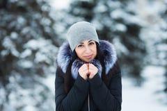 Retrato do inverno da mulher moreno bonita nova que veste a roupa morna Conceito nevando da forma da beleza do inverno Imagens de Stock