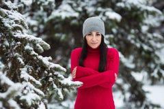 Retrato do inverno da mulher moreno bonita nova que veste a roupa morna Conceito nevando da forma da beleza do inverno Imagem de Stock Royalty Free