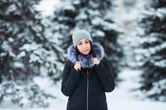 Retrato do inverno da mulher moreno bonita nova que veste a roupa morna Conceito nevando da forma da beleza do inverno Fotos de Stock Royalty Free