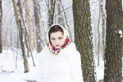 Retrato do inverno de uma menina Imagem de Stock