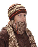 Retrato do inverno de uma mulher Fotos de Stock