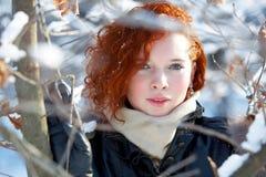 Retrato do inverno de uma mulher bonita imagem de stock