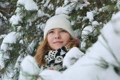 Retrato do inverno nas pele-árvores Imagem de Stock