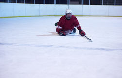 Retrato do jogador de hóquei em gelo Imagens de Stock