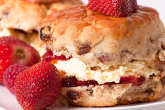 Retrato do macro dos Scones Fotografia de Stock Royalty Free