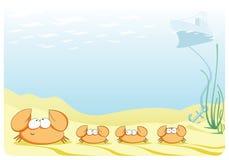 Retrato do mar com família dos caranguejos Fotografia de Stock Royalty Free