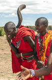 Retrato do Masai Mara Fotografia de Stock Royalty Free