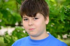 Retrato do menino de aproximadamente 12 anos em Oak Park Imagem de Stock