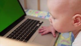 Retrato do movimento lento de 6 meses de bebê idoso que joga com o portátil em sua cama filme
