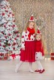 Retrato do Natal de dois amigos de sorriso das irmãs das meninas bonitos beautyful e da árvore branca verde luxuosa do xmas no es Fotografia de Stock Royalty Free